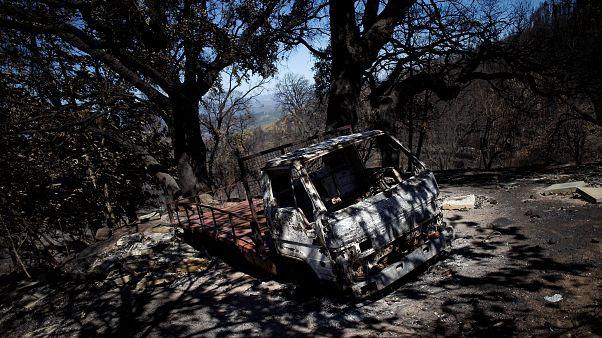 """Proteção Civil portuguesa considera fogo """"globalmente estabilizado"""""""