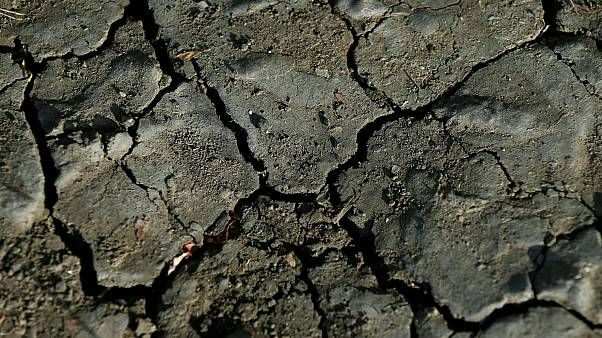 Heat, hardship and horrible harvests: Europe's drought explained