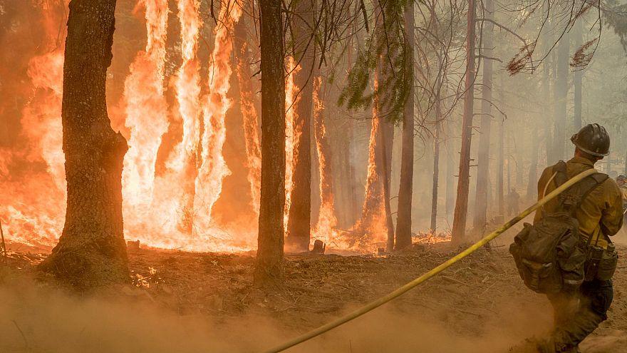 """""""النار المقدسة"""" تواصل زحفها في جبال كاليفورنيا"""