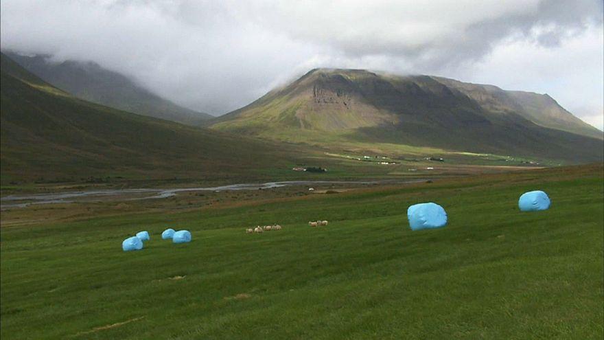 Scandinavian farmers hit by drought
