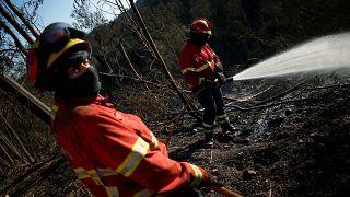 Algarve surveys damage as Portugal's wildfires continue to threaten