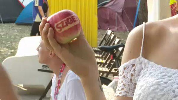 Visszaváltható pohárral a Sziget Fesztiválon