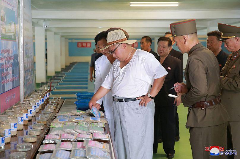 Corea del Norte acusa a Estados Unidos de dificultar la desnuclearización - Internacionales