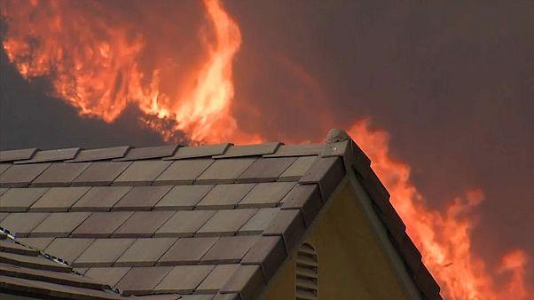 Kalifornien: Flucht vor den Flammen