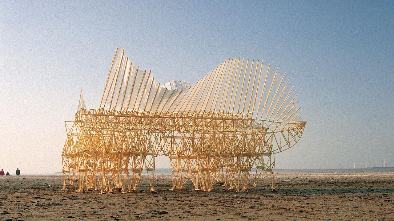 شاهد : فنان هولندي يبعث الحياة في مخلوقات صنعها على الشاطئ
