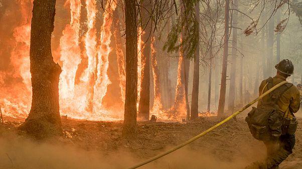 """شاهد: صور جويّة لجرافة تسابق """"النار المقدسة"""" في كاليفورنيا"""