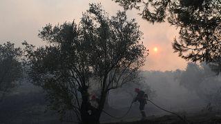 Σε κατάσταση έκτακτης ανάγκης η Εύβοια - Μαίνεται μεγάλη πυρκαγιά