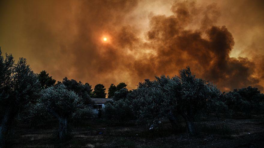 Megint ég az erdő Görögországban