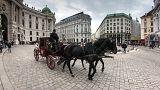 Ein Fiaker in Wien