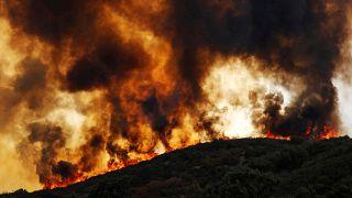 ألسنة لهب تندلع في منطقة يجتاحها حريق (مندوسينو كومبليكس) في كاليفورنيا