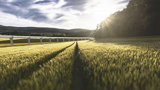 Une piste de test de l'hyperloop sera installée en Limousin en France