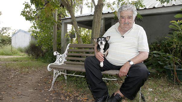 ¿Por qué el expresidente Mujica deja el Senado uruguayo?