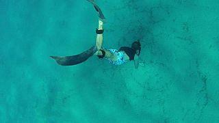 Morì durante un'immersione in Corsica: ritrovati i suoi ultimi scatti dopo l'appello social