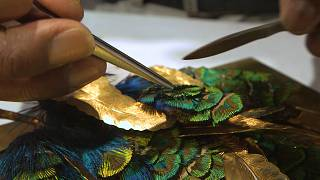 Visiting one of the last remaining feathercraft artists