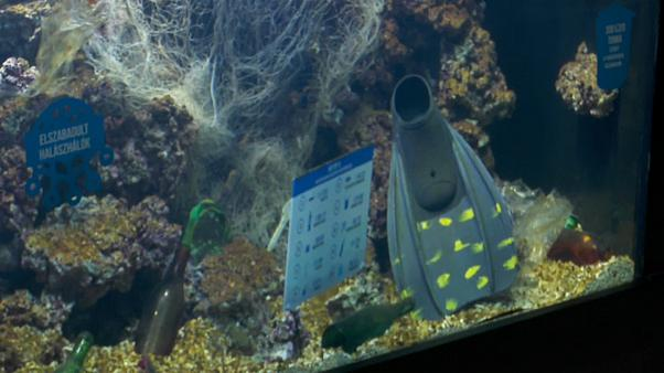 Aquário de plásticos alerta para contaminação dos mares