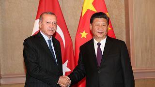 Cumhurbaşkanı Erdoğan ve Çin Devlet Başkanı Şi Cinping