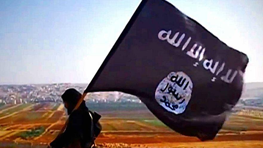 البنتاغون: داعش لم ينته وعدد عناصره بعشرات الآلاف