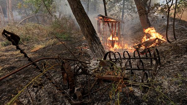 Feuertornado wütet in nordkalifornischer Stadt