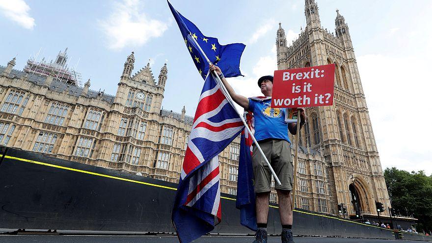 İngiliz milyarderden yeni Brexit referandumuna 1 milyon sterlin bağış