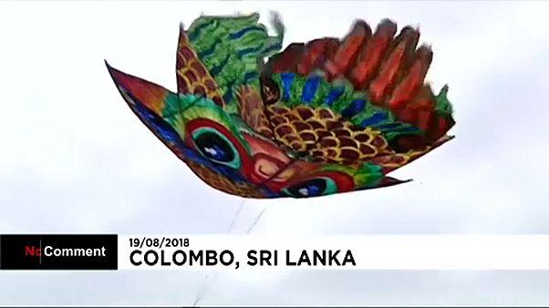 شاهد: طائرات ورقية ملونة تحلق في سماء سريلانكا