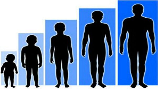 دراسة: البشر أصبحوا أطول قامة وبسرعة قياسية