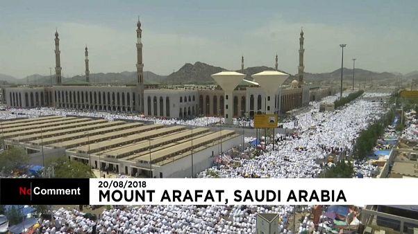 O dia da orgação no Monte Arafat
