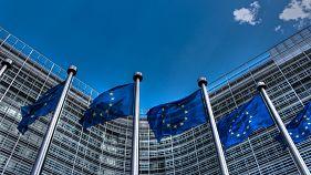 European Union Flags 2