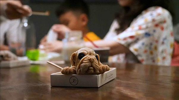 No menu: em vez de cachorro quente há cachorro gelado!