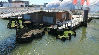 Hollanda deniz ve nehirlerdeki çöplerden geri dönüşüm parkı yaptı