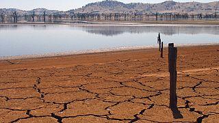 الاحتباس الحراري... درجات حرارة قياسية في 2018 وتغيرات مناخية قد تهدد إنتاج الغذاء مستقبلاً