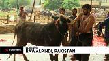 I musulmani del Pakistan festeggiano la festa di Eid al Fitr