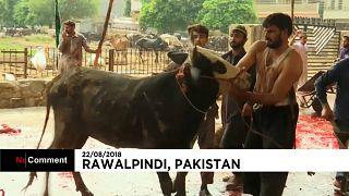 Les musulmans pakistanais célèbrent l'Aïd al-Adha