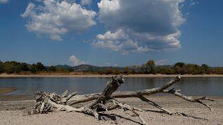 Seca reduz leito do Danúbio a mínimos