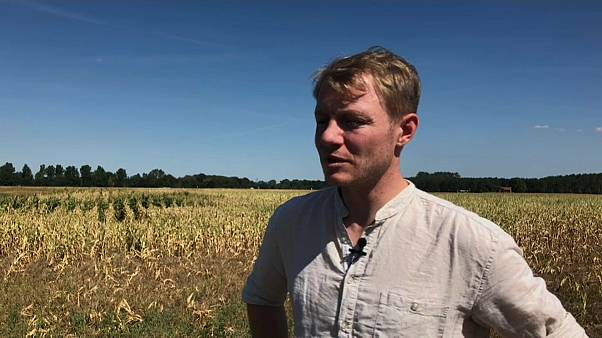 """Bauern in Not: """"Das große Sterben wird's nicht geben"""""""