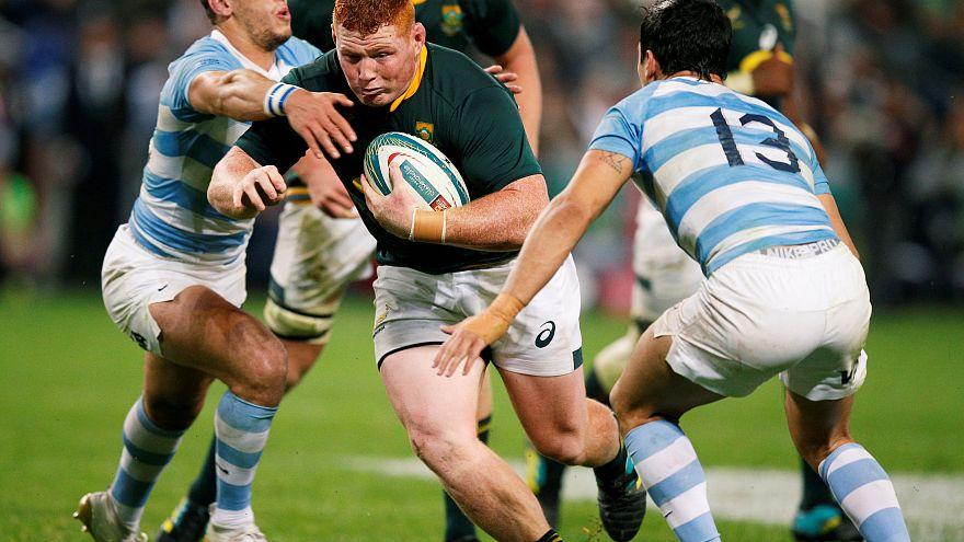 Springboks confident against Argentina for second test