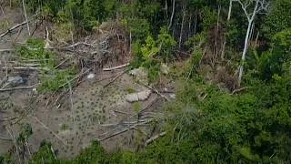 An uncontacted tribe in Brazil