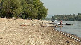 La canicule assèche le Danube