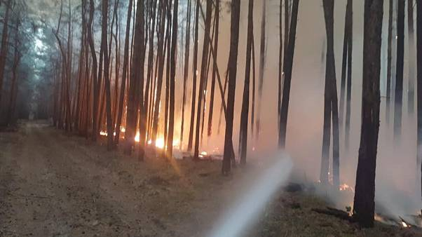 In pictures: Hundreds evacuated near Berlin as forest fire threatens villages