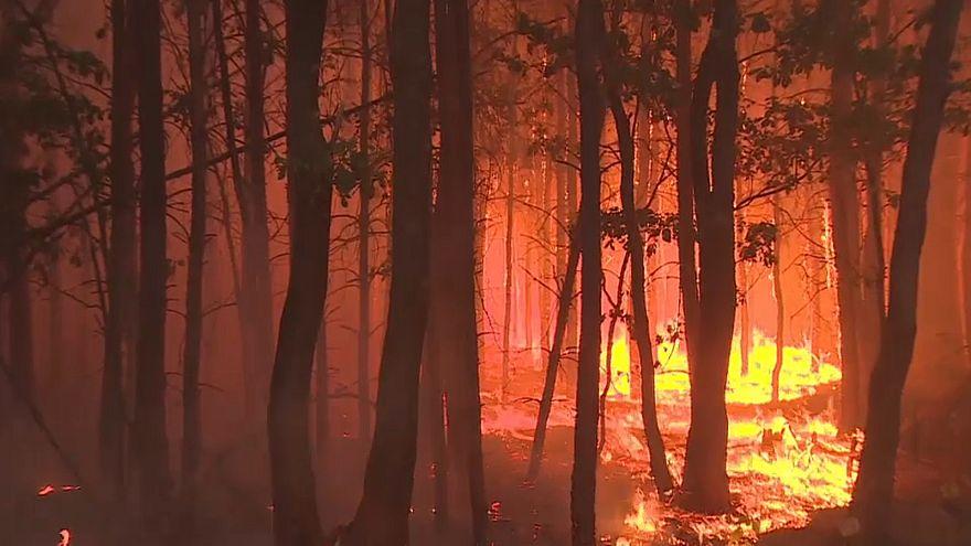 شاهد:اجلاء المئات في برلين بسبب حرائق غابة مليئة بذخائر لم تنفجر بعد