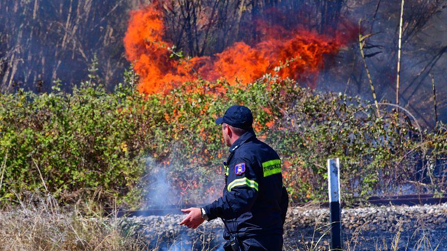 Πυρκαγιά στις Ροβιές Ευβοίας- Δεν απειλούνται κατοικίες