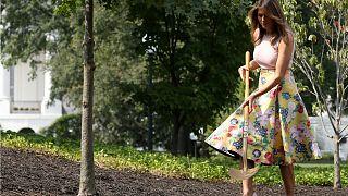 سيدة أمريكا الأولى تغرس شجرة رئاسية في حديقة البيت الأبيض
