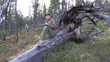 """Putins Urlaub in der Natur: """"Wow! Das ist ein Märchenwald"""""""