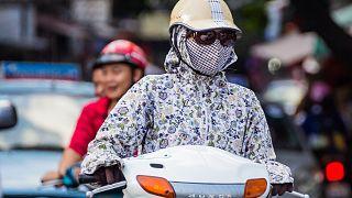Forscher: Schlechte Luft macht krank und doof