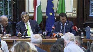 Salvini und Orban: Was eint sie?