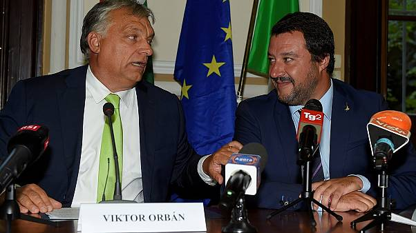 Will Salvini and Orbán rock the European Union? No!   View