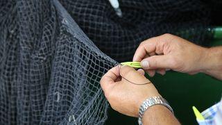 Balık tüketmeyen Türkiye Avrupa'nın 8'inci büyük deniz ürünleri üreticisi