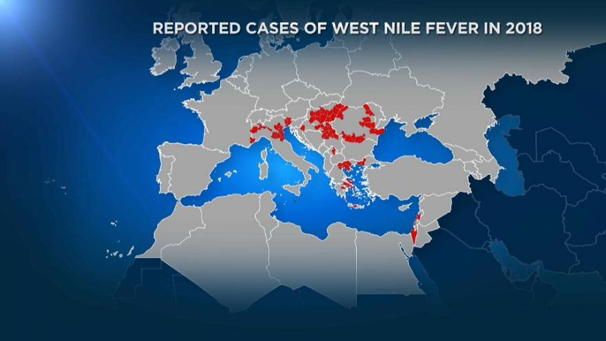 La febbre del Nilo uccide 14 persone in Italia, 17 in Grecia