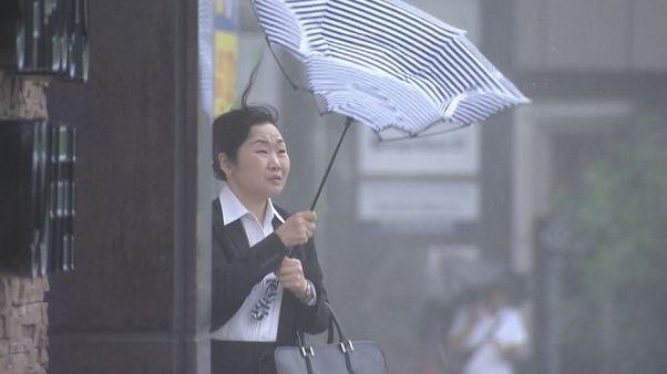 "По следам тайфуна ""Джеби"""