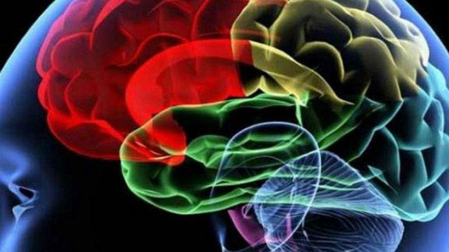 Yaz ve sonbaharda beynin bilişsel fonksiyonları artıyor