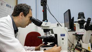 Une nouvelle bactérie redoutable dans les hôpitaux